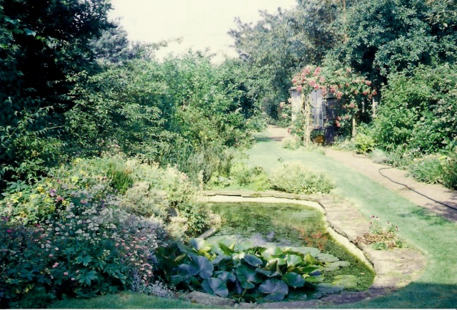 Looking from the back of the house along the garden