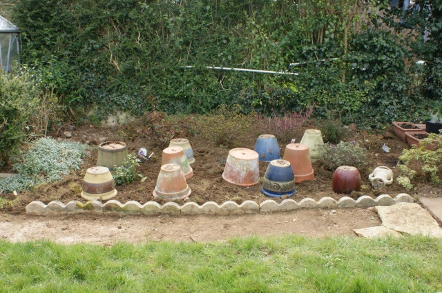 The pots are there so we don't have lots of bare earth.